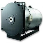 Котел промышленный водогрейный ICI Caldaie TNX 4000