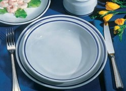 Тарелка обеденная Tognana AZETA 26 см